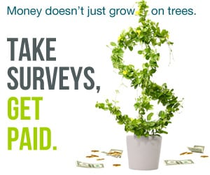 online surveys that pay cash
